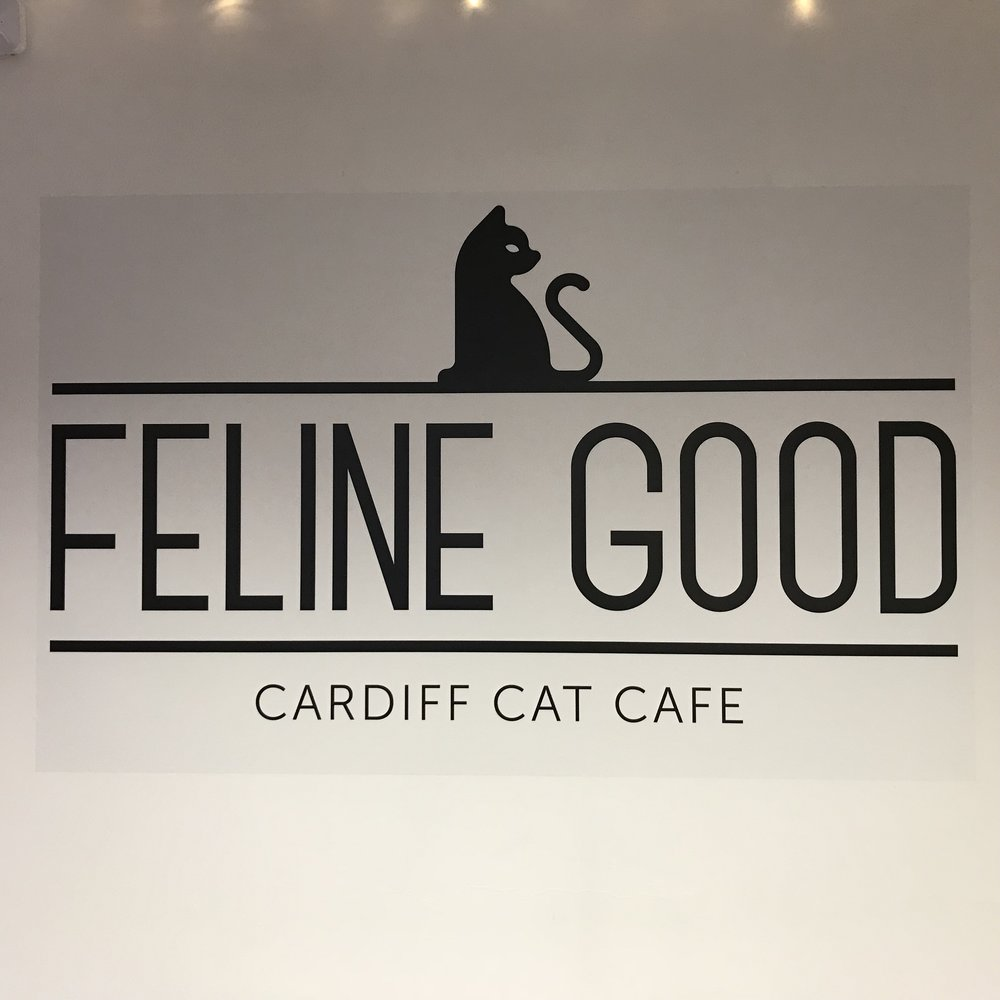Feline Good Cat Cafe   Cardiff, UK (Wales)