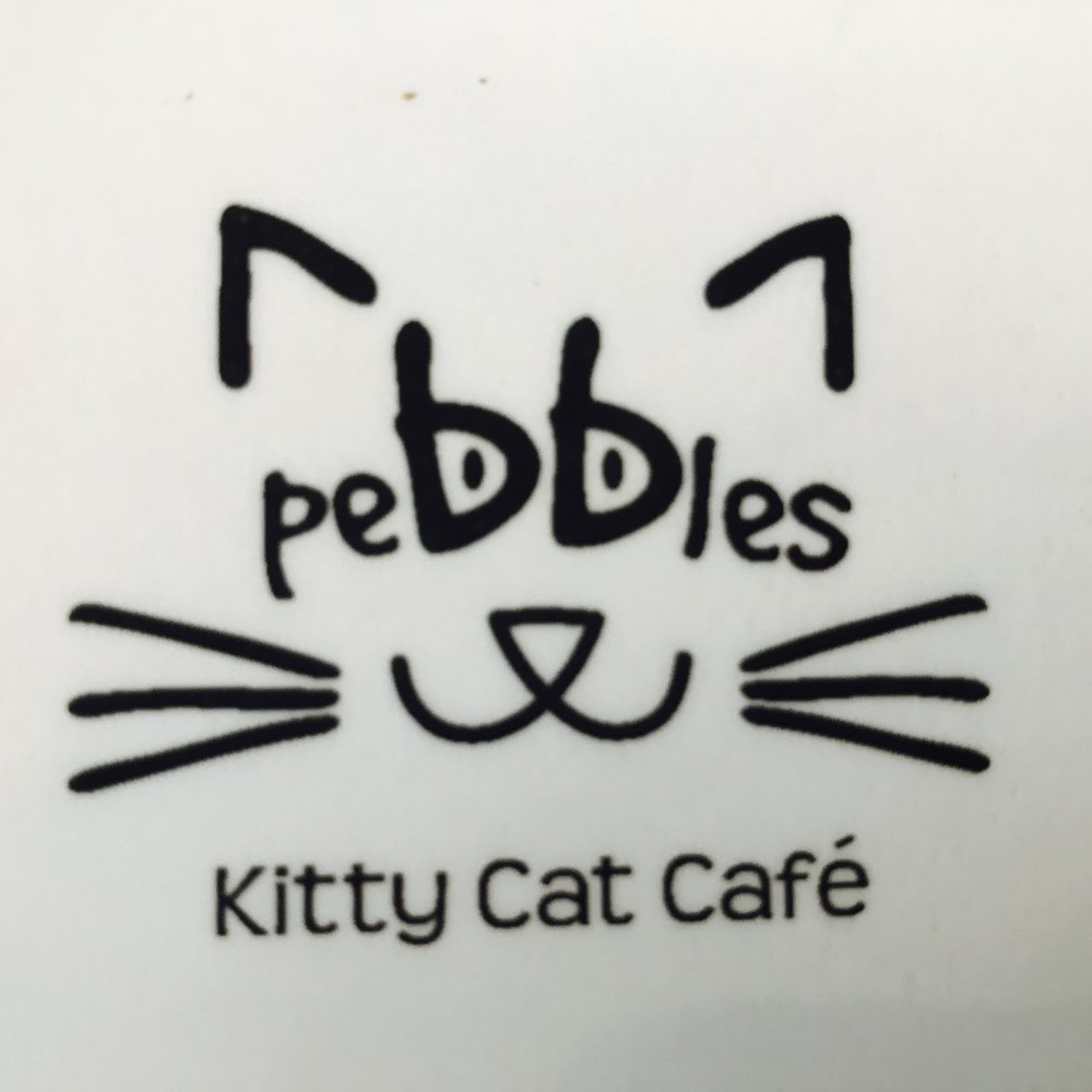 Pebbles Kitty Cat Cafe   Rotterdam, Netherlands