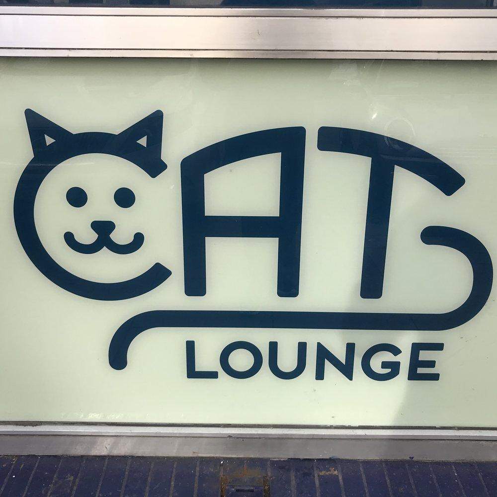 Cat Lounge Dublin, Ireland