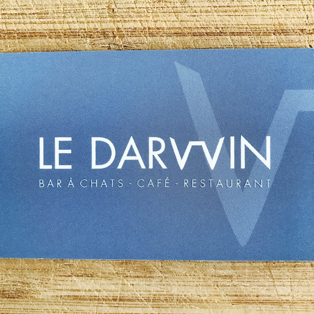 Le Darwin Troyes, France