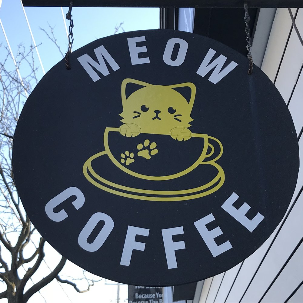 Meow Cat Cafe Toronto, ON, Canada