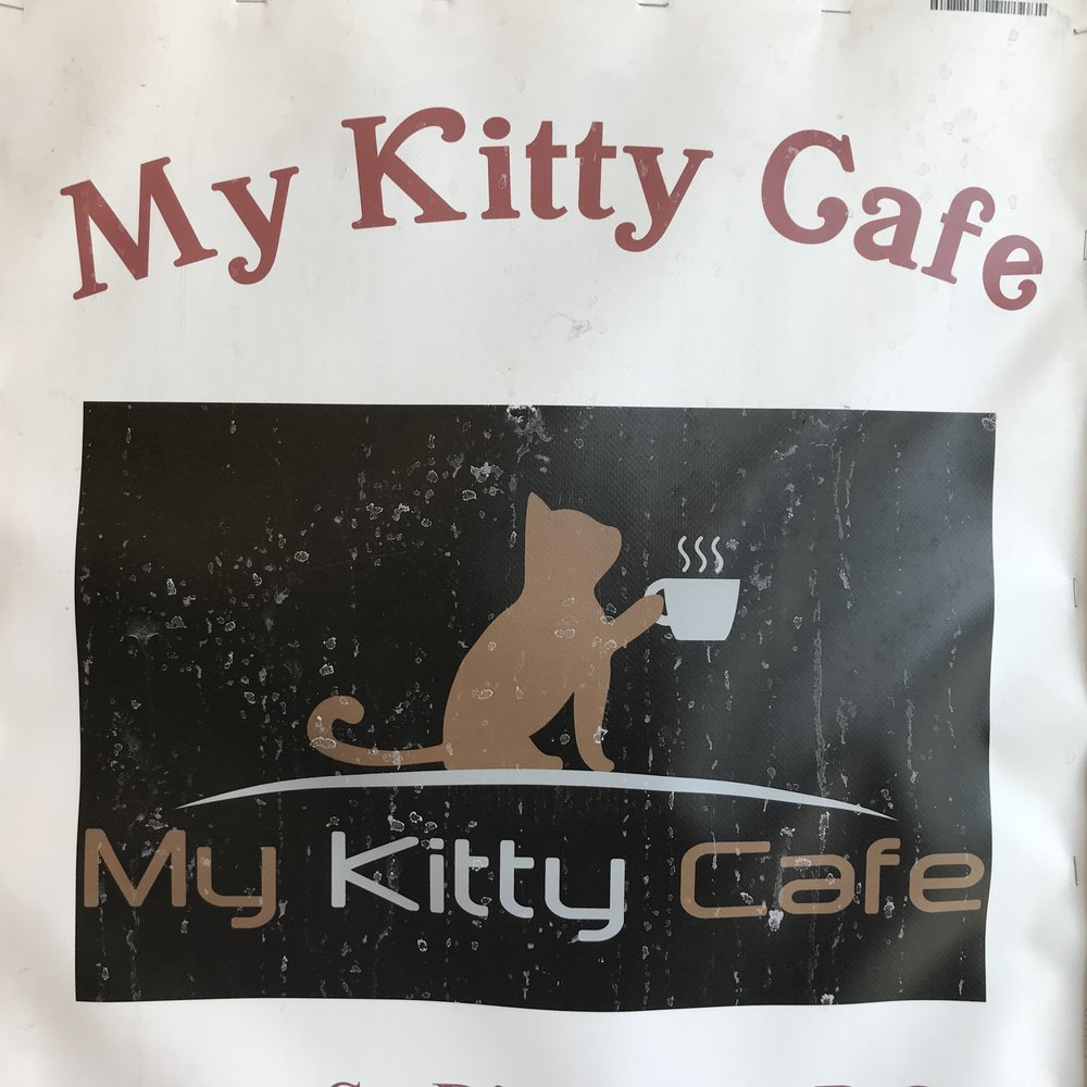 My Kitty Cafe   Guelph, ON, Canada