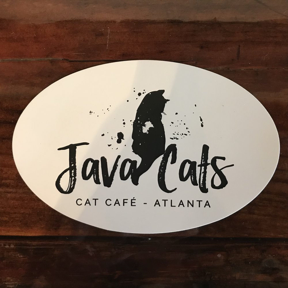 Java Cats   Atlanta, GA, USA