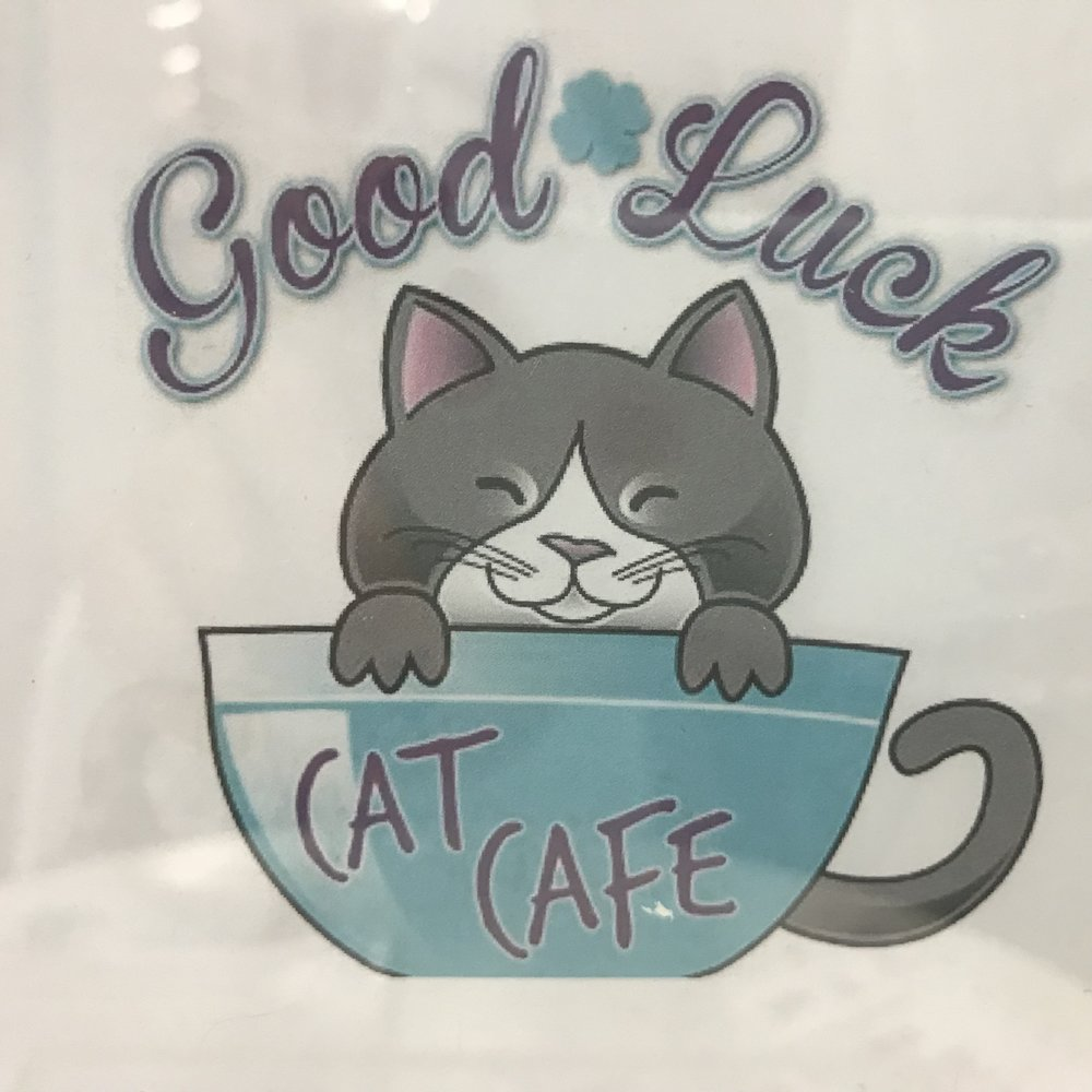 Good Luck Cat Cafe   Fort Lauderdale, FL, USA