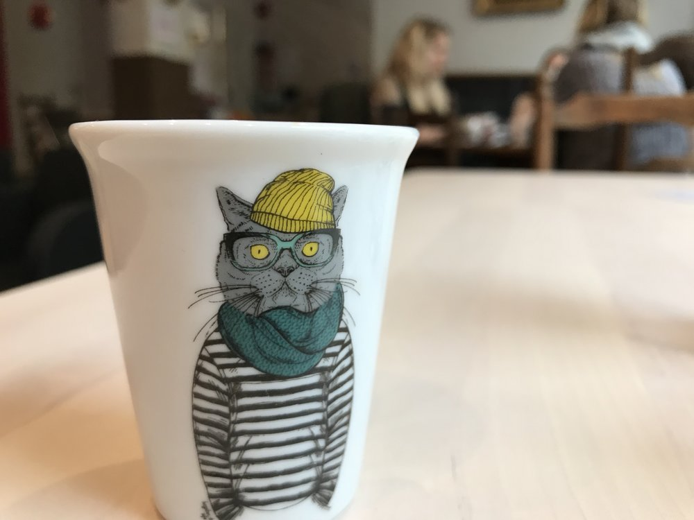 Chatpuccino_rennes-47.jpg