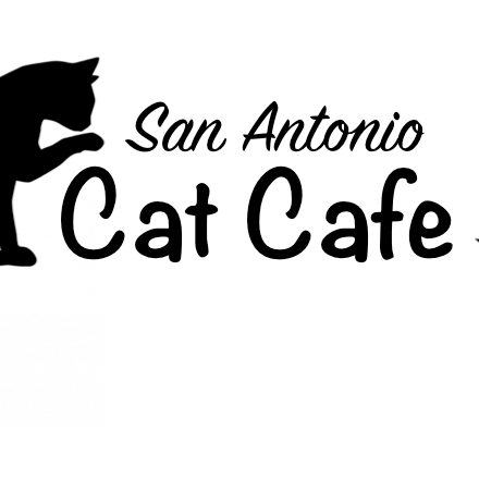 San Antonio Cat Cafe   San Antonio, TX, USA