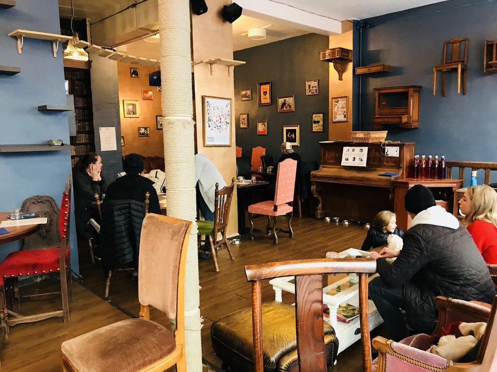 Cafedeschats_paris-05.jpg