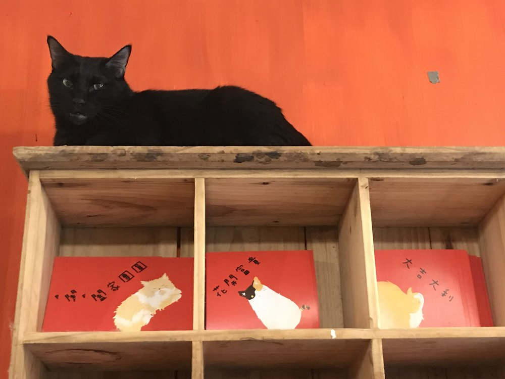 Cat Art Home-19.jpg