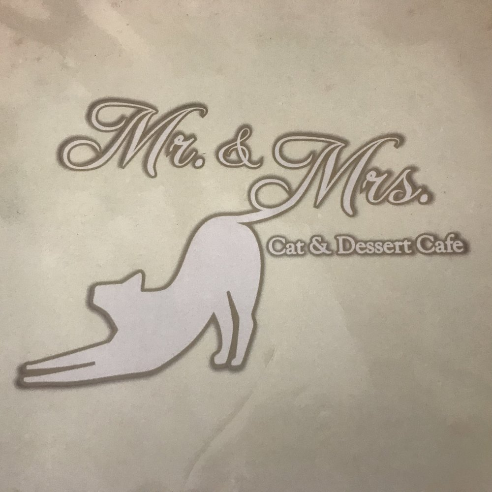 Mr & Mrs Cat Cafe   Hong Kong