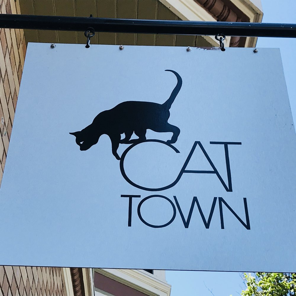 Cat Town   Oakland, CA, USA