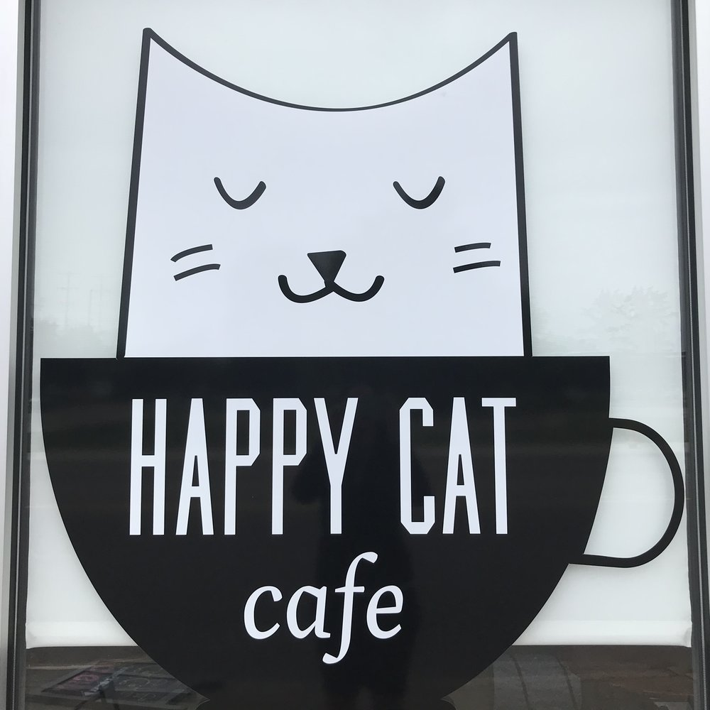 Happy Cat Cafe   Grand Rapids, MI, USA