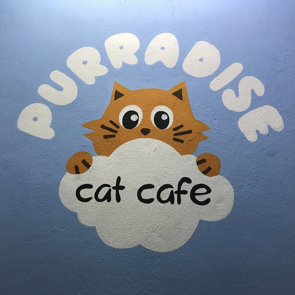 Purradise Cat Cafe   Kuala Lumpur, Malaysia