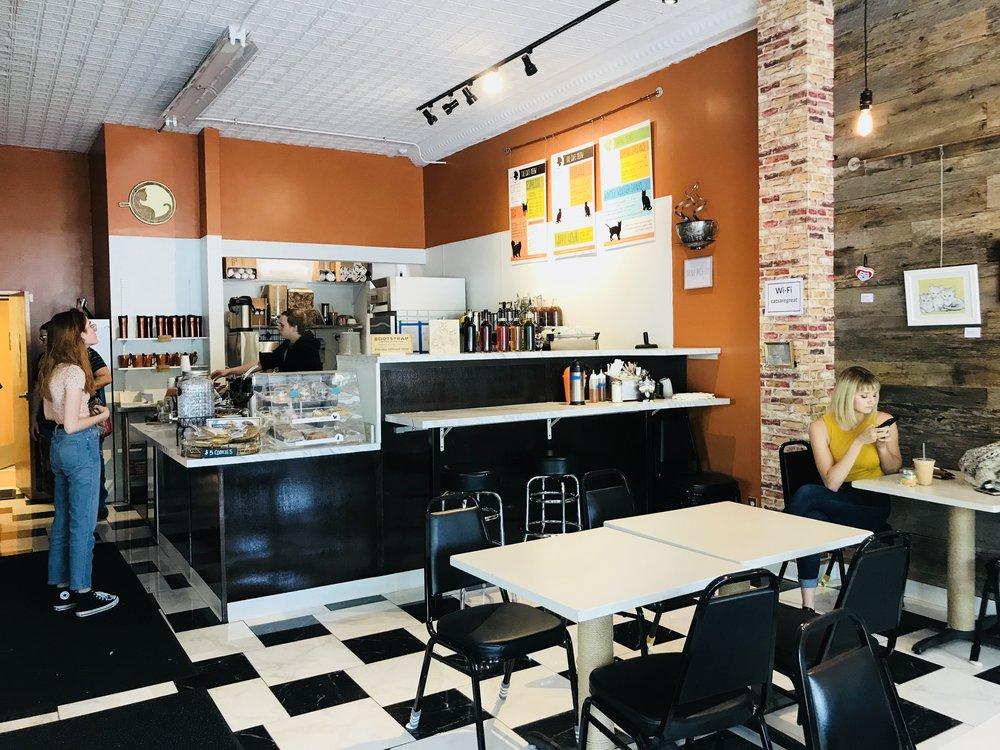 Cafe Meow-39.jpg