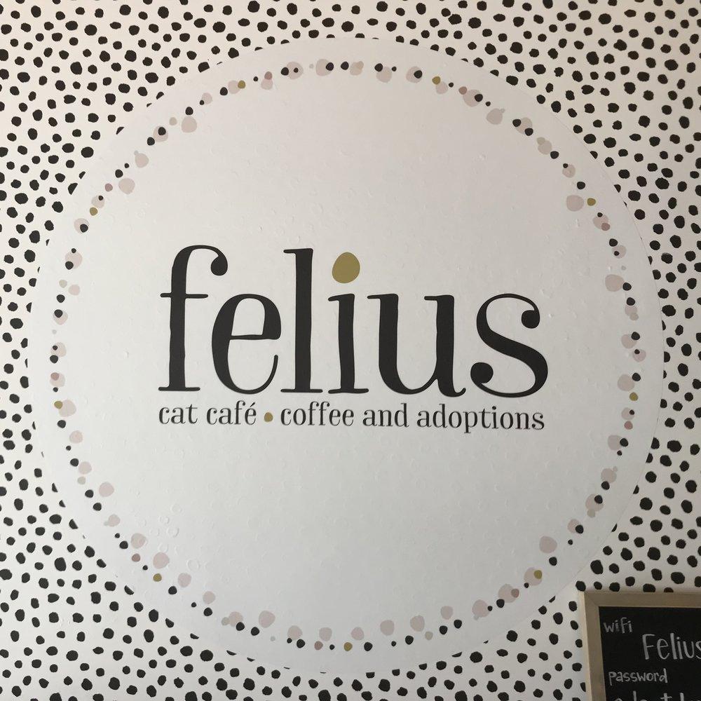 Felius   Omaha, NE, USA