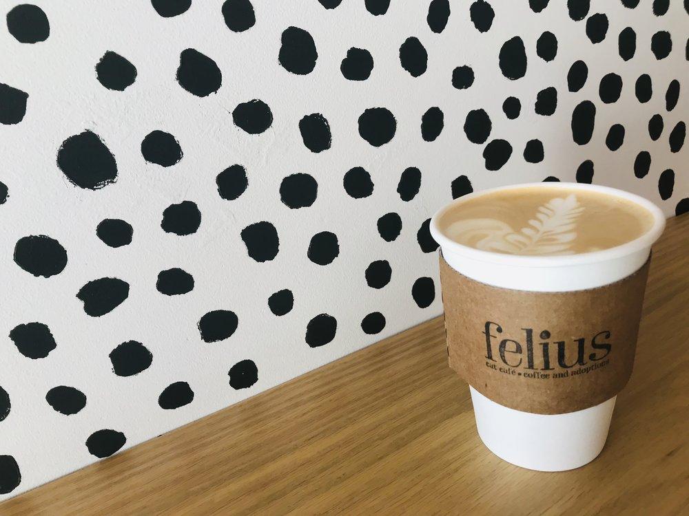 Felius-01.jpg