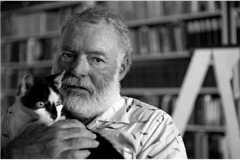 Cat-held-by-Hemingway-.jpg