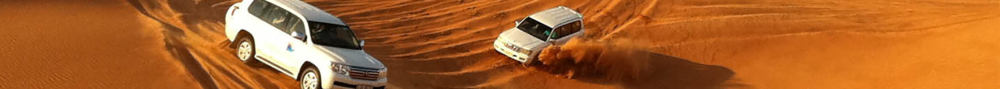 TG FROM DUBAI TOUR –DESERT SAFARI  -