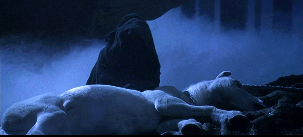 Creepy Dead Unicorn in Harry Potter