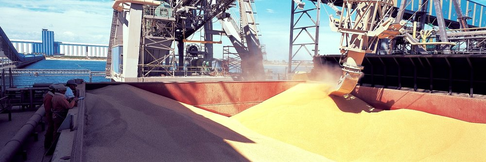 0290E96 LOADING GRAIN de bordered.jpg