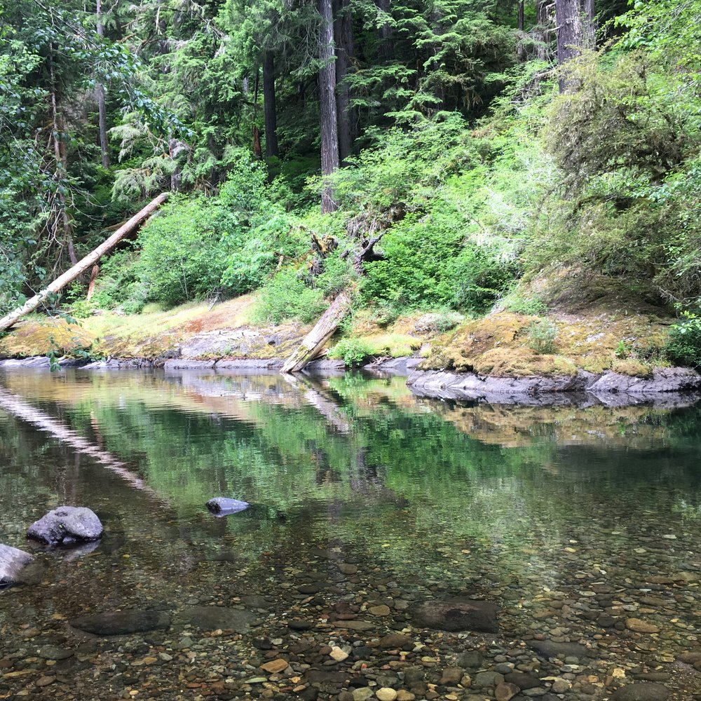 The campsite had a nice swimming hole. If it hadn't been raining, I might have taken a dip.