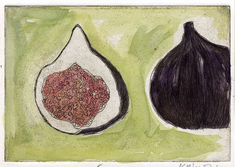 Fig-etching_watercolour