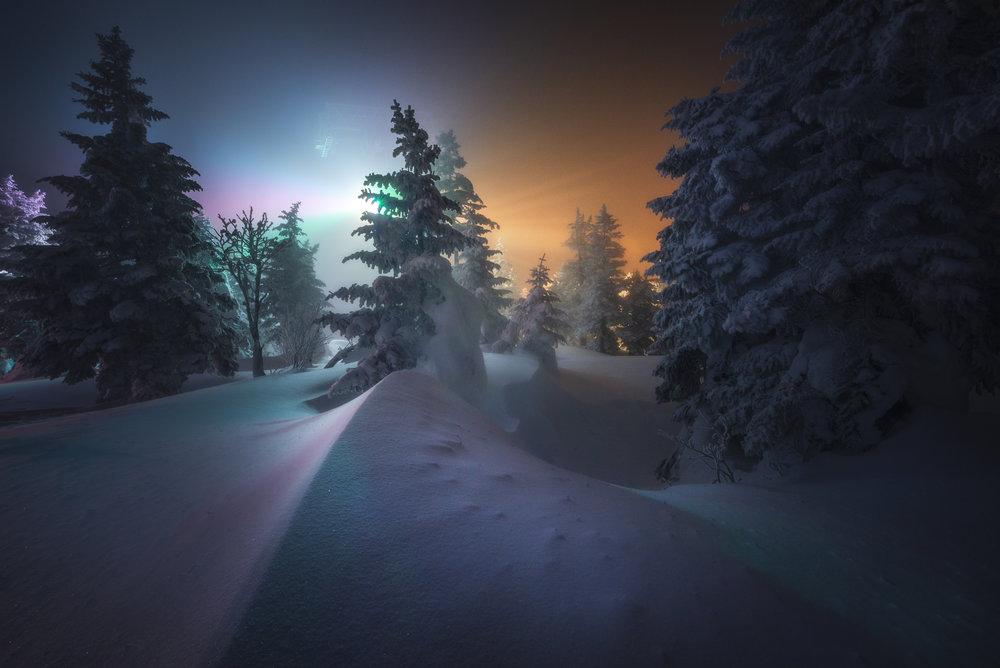 Zao Onsen Snow Monsters