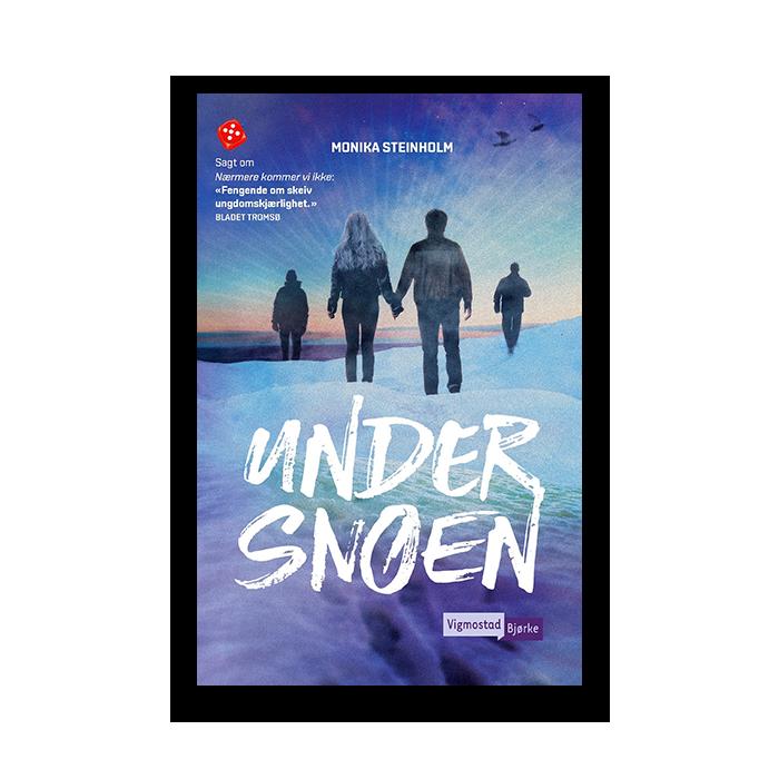 under_snoen.png