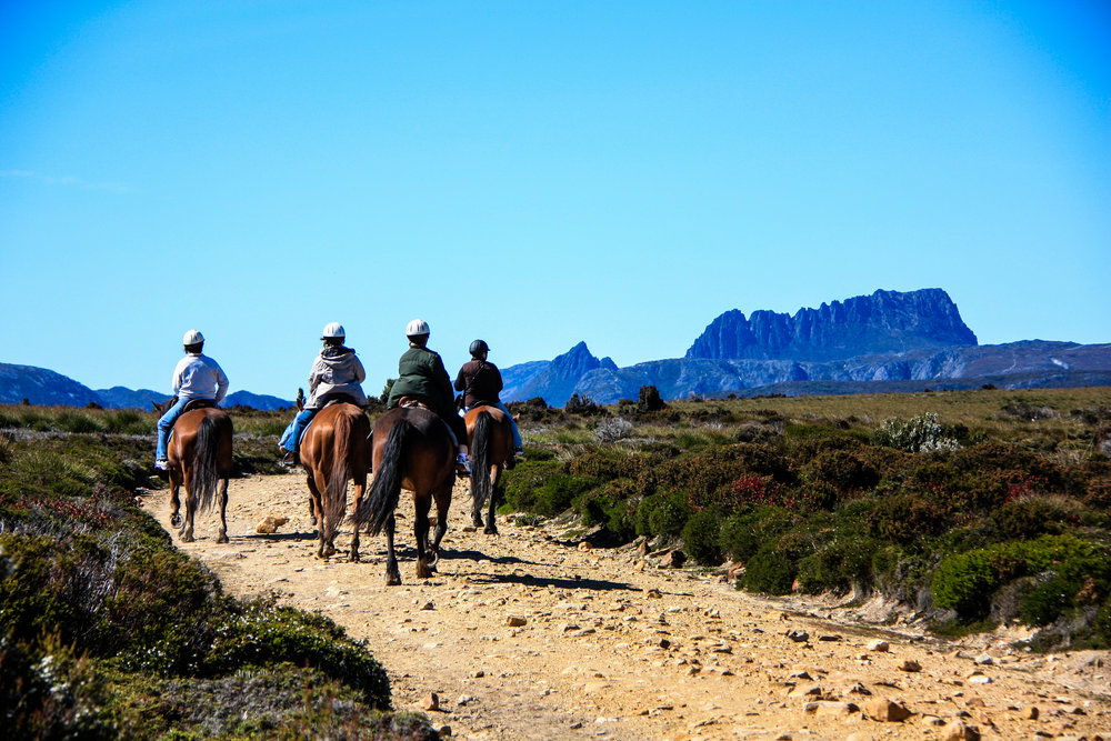 Cradle Country Adventures Tassie4Kids