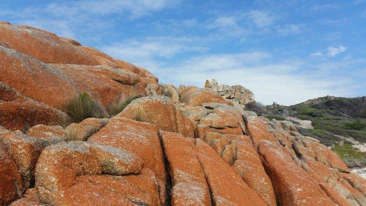 Flinders Island Image Credit R. McCabe