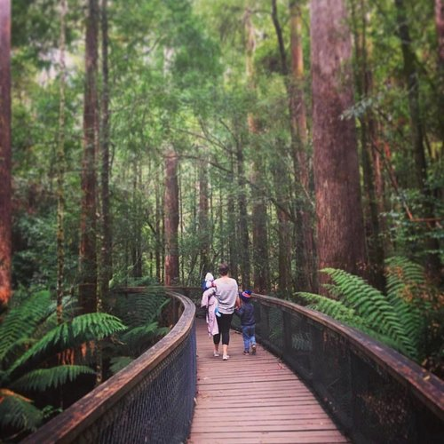 Hastings Cave State Reserve. Image shared by Instagram/katebox15