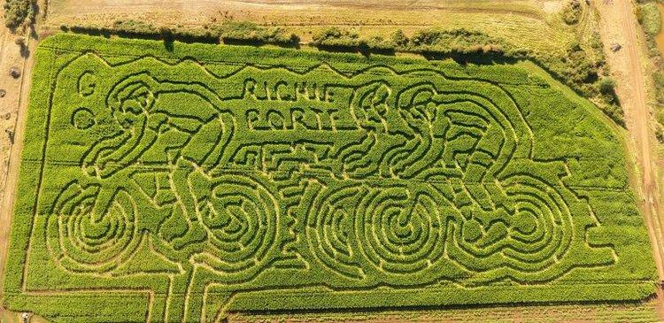 Tassie4Kids Rupertswood Farm Crop Maze