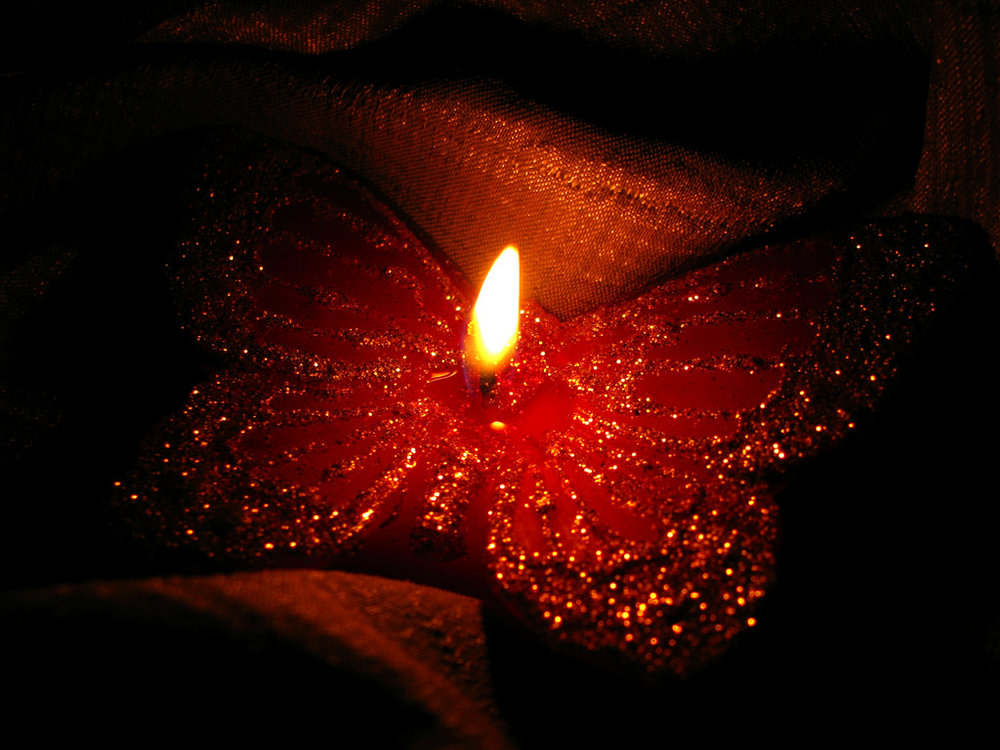butterfly light candle love.jpg