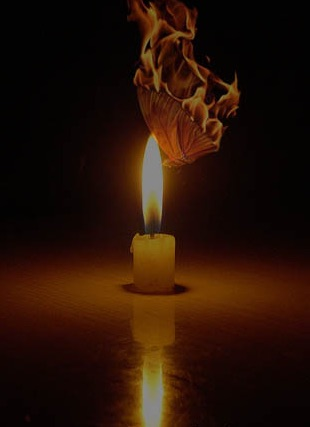 butterfly and the candle 2.jpg
