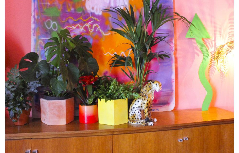 MLH Lounge Plants.jpg
