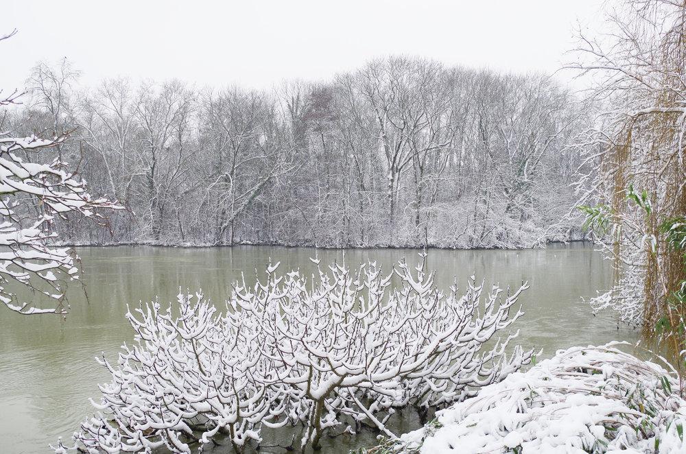 winterwonderland_janinabourosu8.jpg