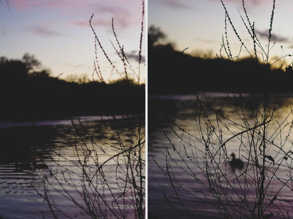 5_winter_sunset_janina_bourosu_art.jpg