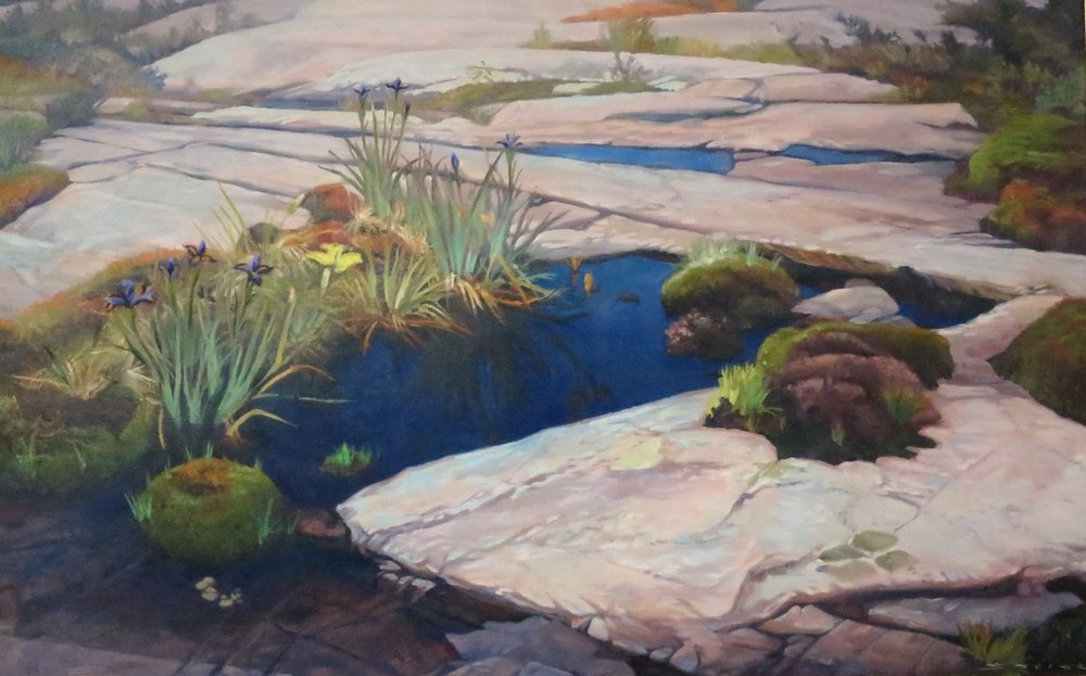 Nature's Garden Painted Rocks, 24 x 38, oil