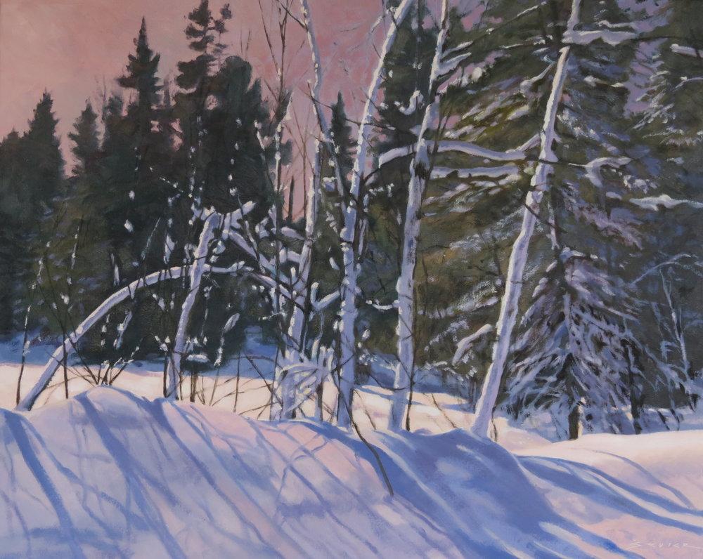 Algonquin-Late Winter Day, 16x 20, oil