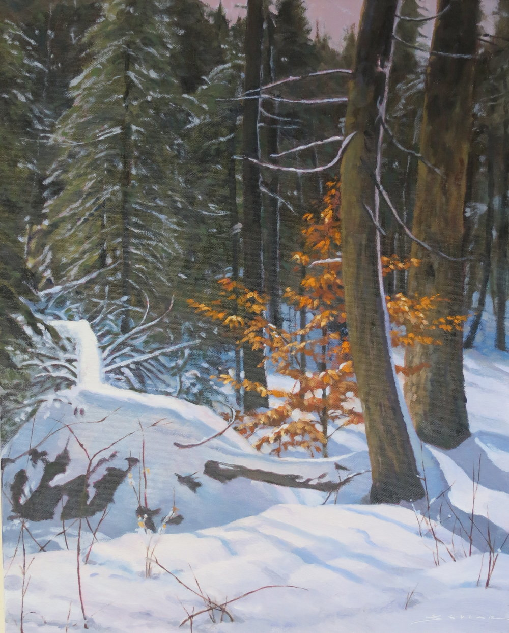 Algonquin Winter, 20 x 16, oil