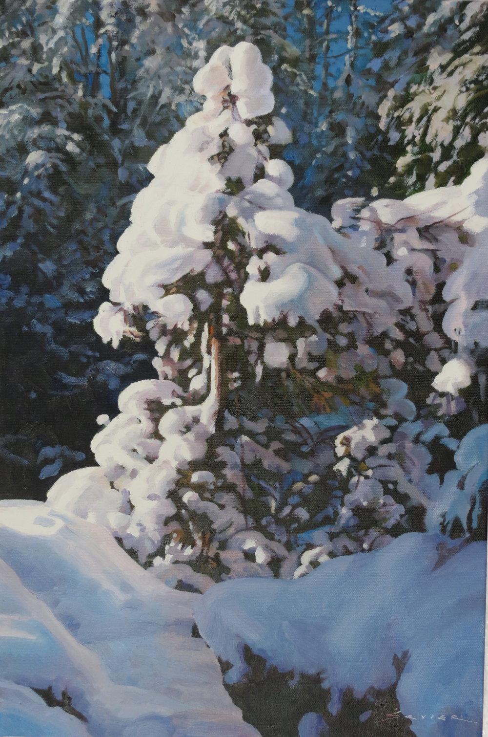 New Snow, 18 x 12, oil