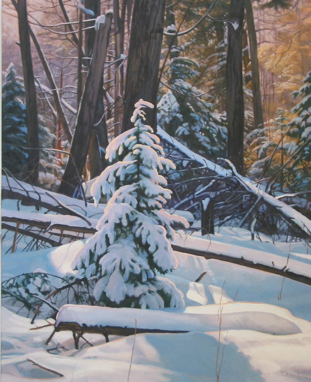 Winter's Light, 30 x 24, oil