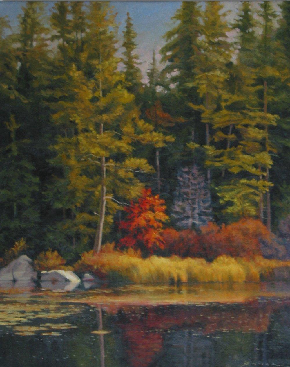 Algonquin Shore, 20 x 16, oil