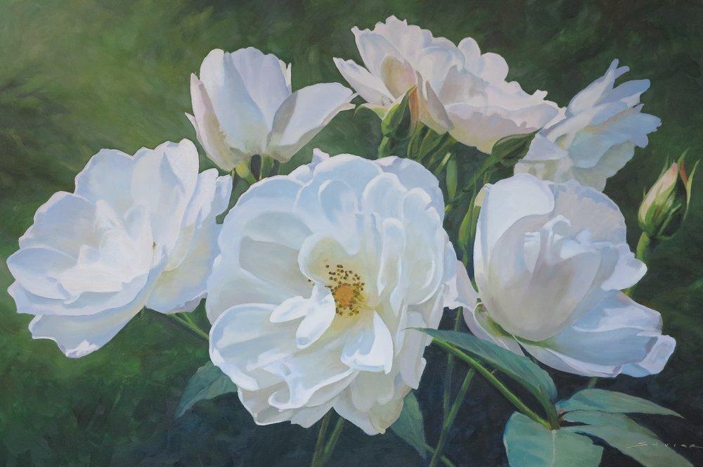 White Roses of Dunkeld   24 x 36, oil