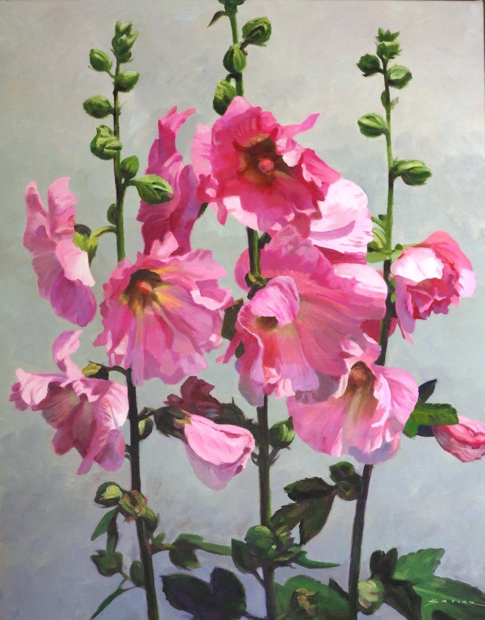 Pink Hollyhocks on a Light Background,  28 x 22, oil
