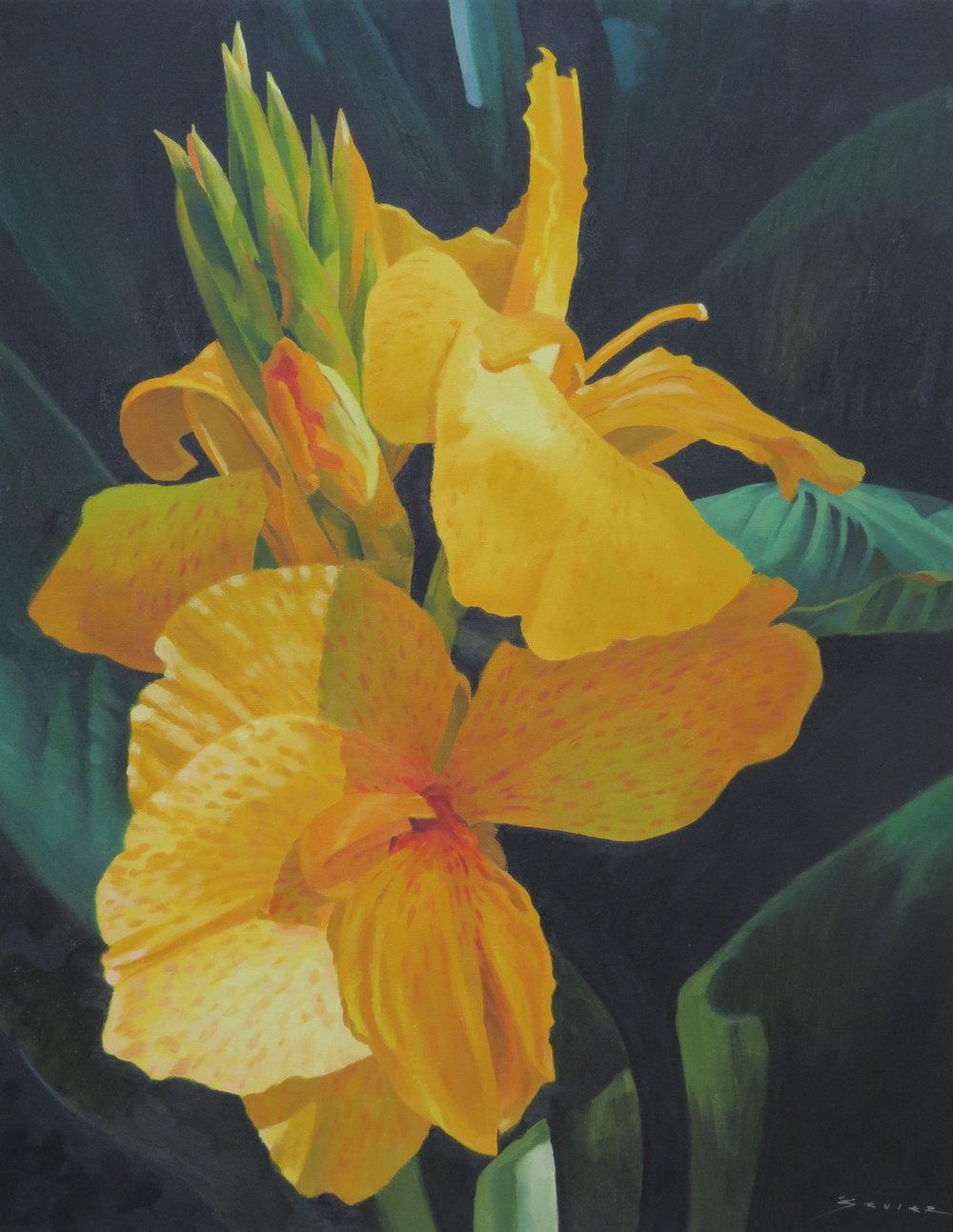 Yellow Calla Lily,  22 x 28, oil