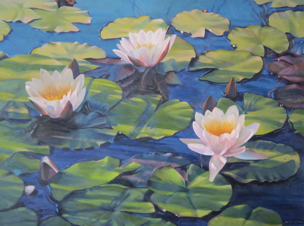 Lilies in Shadows,  30 x 40, oil