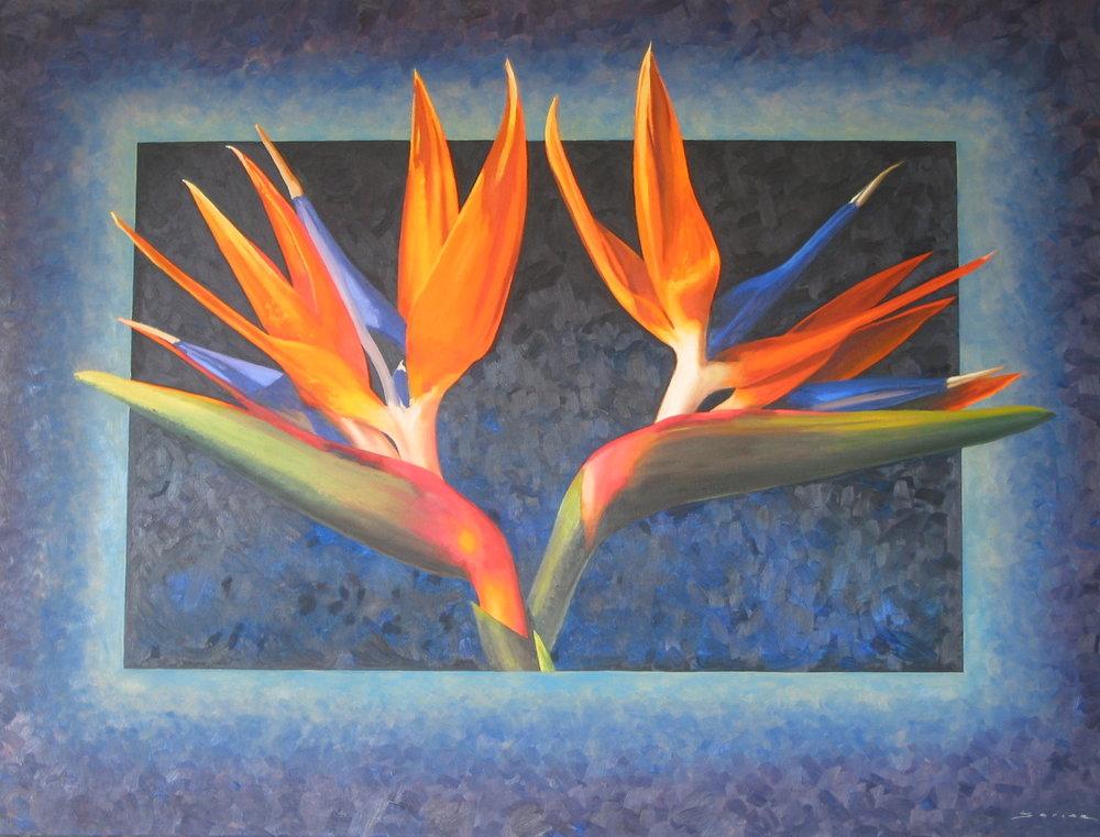 Bird of Paradise,  36, 48, oil