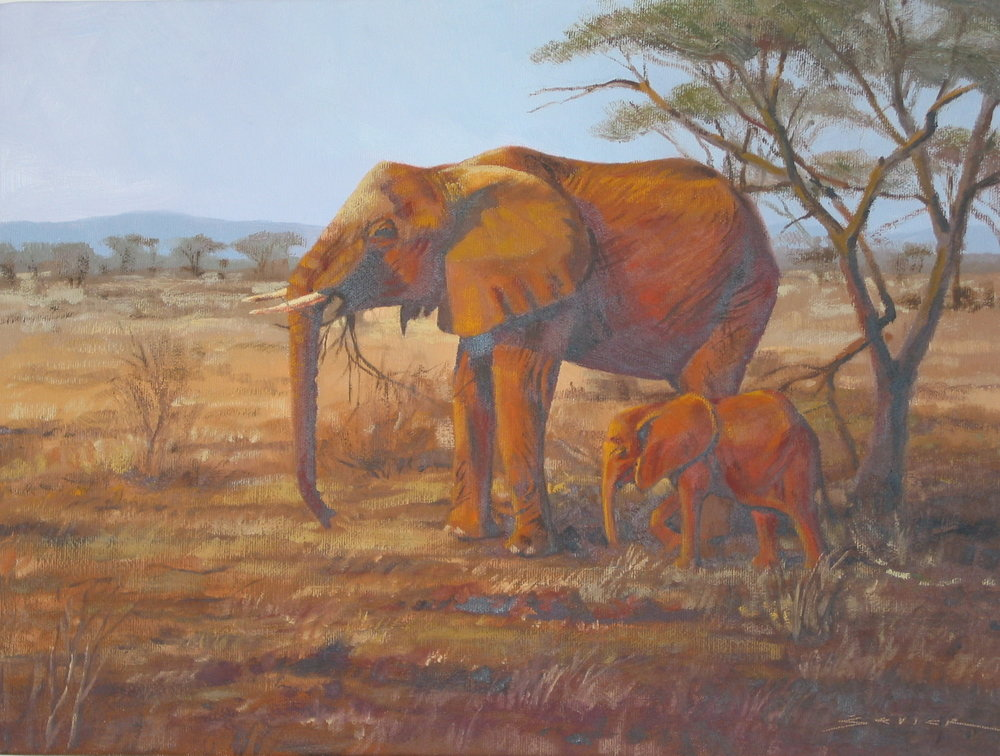 Elephants, Samburu, Kenya, 12 x 16