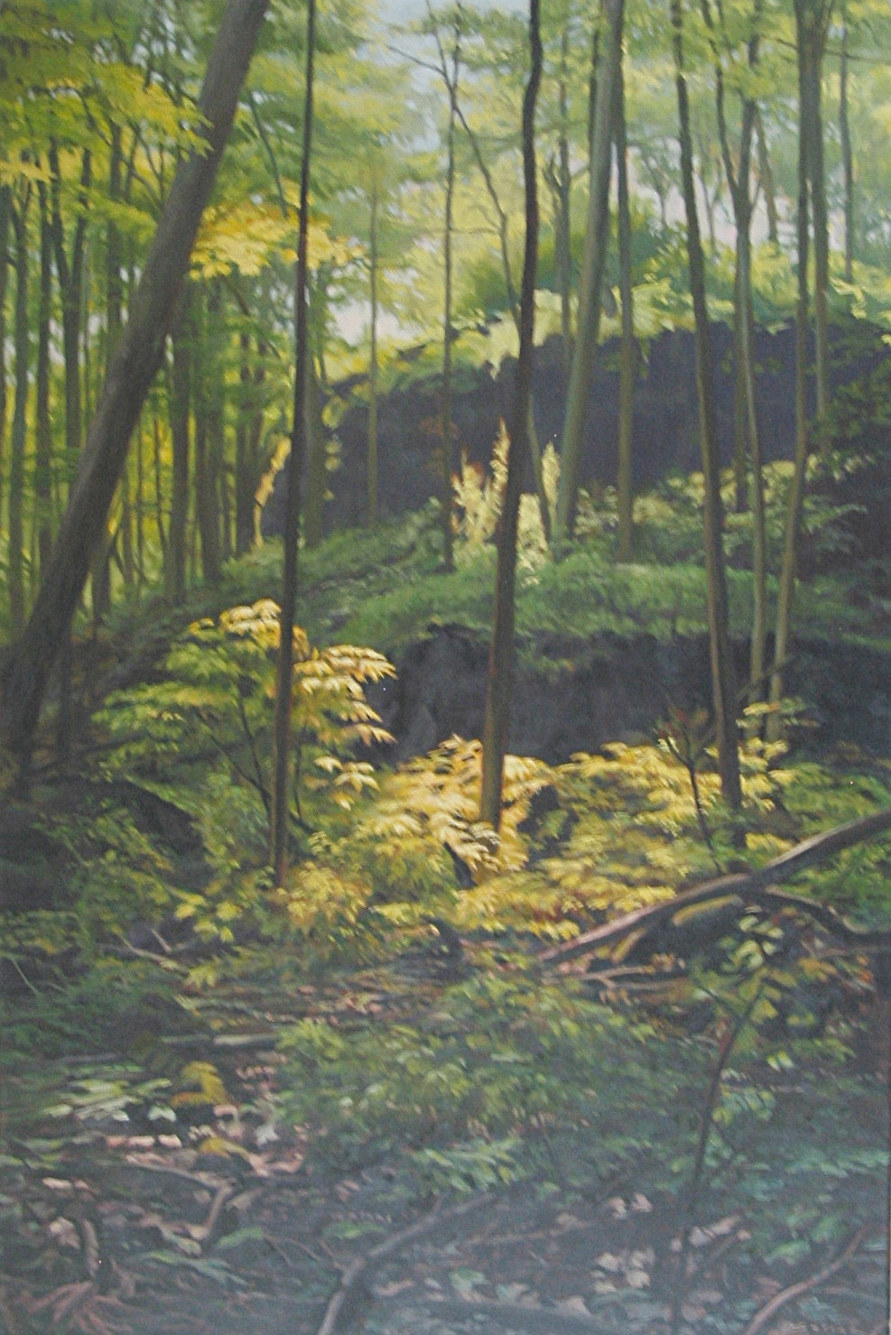 Woods at Angel's Gate Niagara, 36 x 24, oil