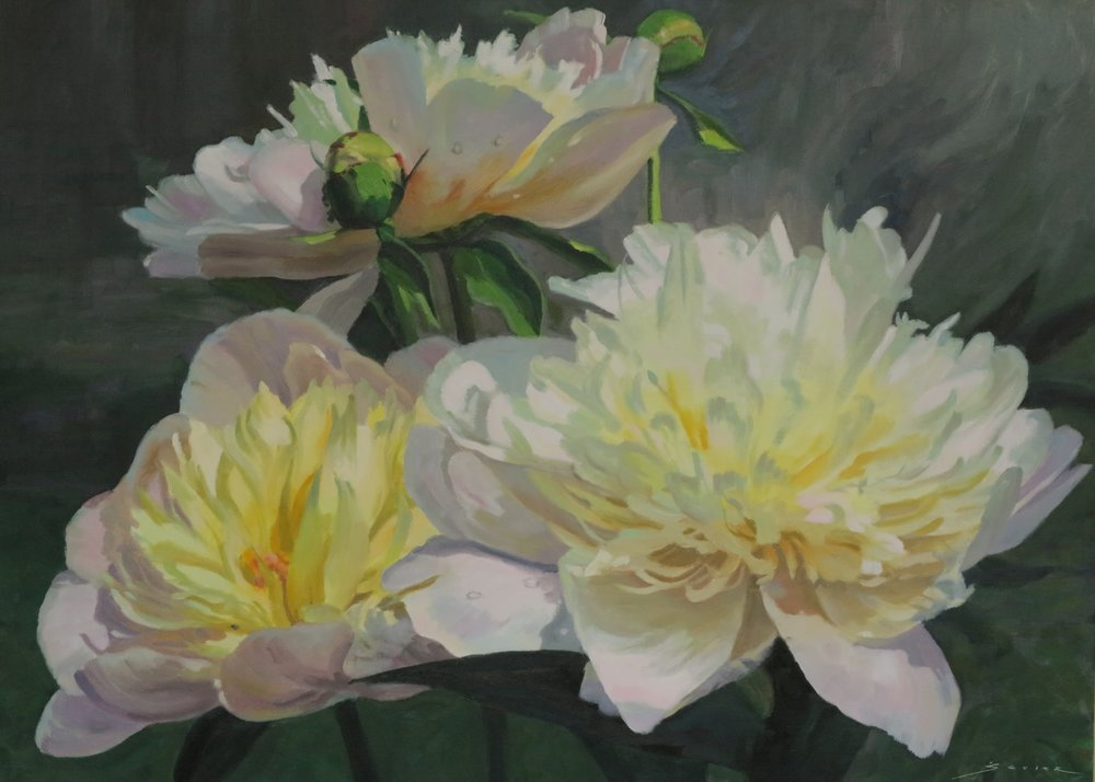 Yellow Centred Peonies